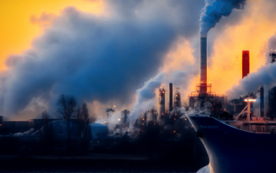 What does the net zero carbon emissions by 2050 mean practically?